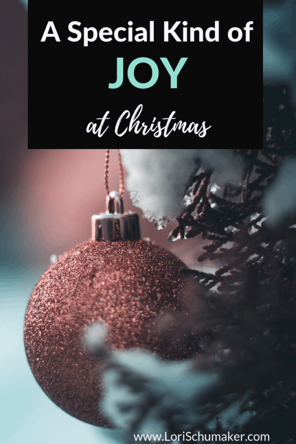 But how do we do it? How do we experience a special kind of Christmas joy and not get lost in the hustle and bustle of the season?