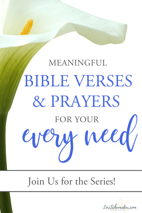 In this series, we will give you meaningful Bible verses and prayers for your every need. The series will include verses and prayers for all the critical parts of our live —worry and stress, trusting God, unconditional love, a grateful heart, faithfulness, not giving up, joy, courage, and insecurity. #bibleverses #bible #scripture #prayer #wordofgod #meaningfulbibleverses #favoritebibleverses #joy #insecurity #worryandstress #trustinggod